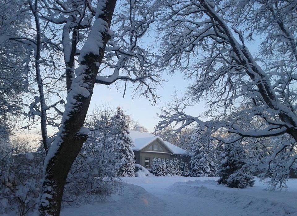 Essu Mõis talvel